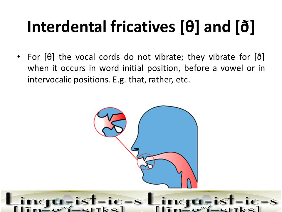 Interdental fricatives [θ] and [ð]